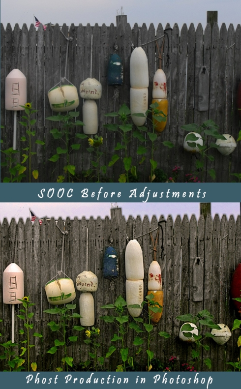 Seaport Fence with Buoys