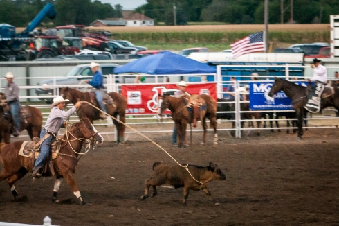 Calf Roping at the Wahoo Nebraska Rodeo